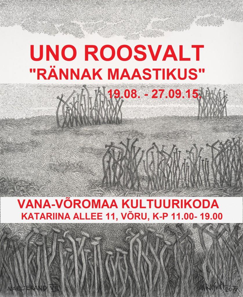 Naelterand VII 2013.jpg3
